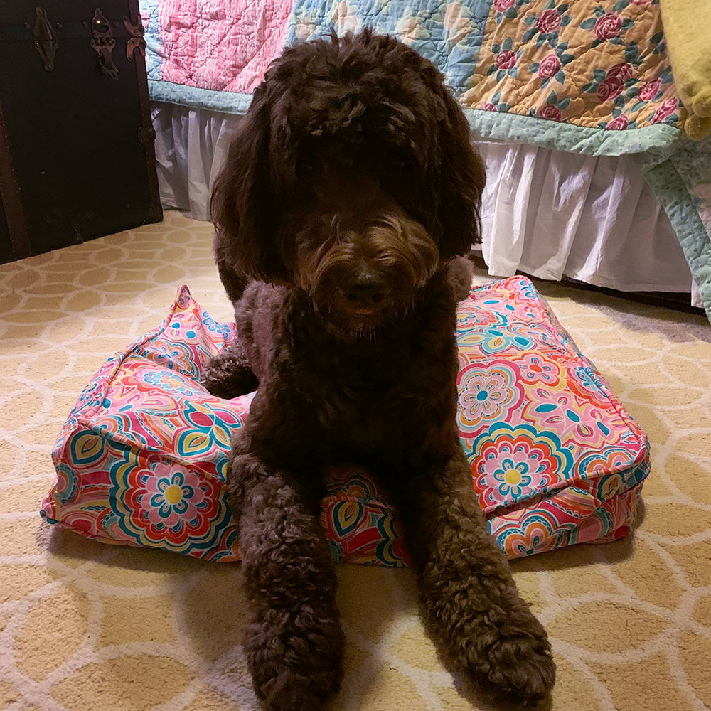 flower power pet bed cover